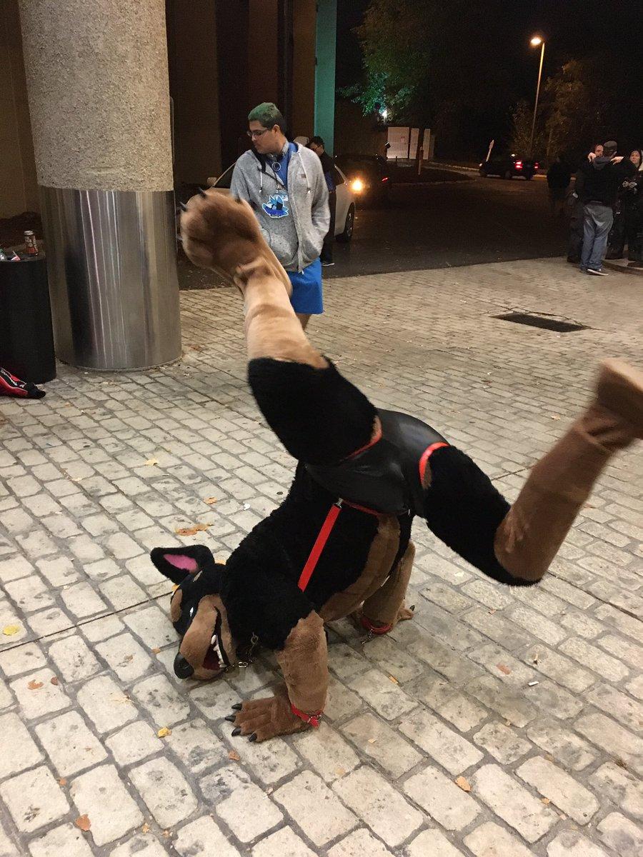 chein-capoeira